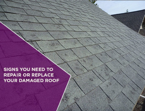 Signs You Need To Repair Or Replace Your Damaged Roof
