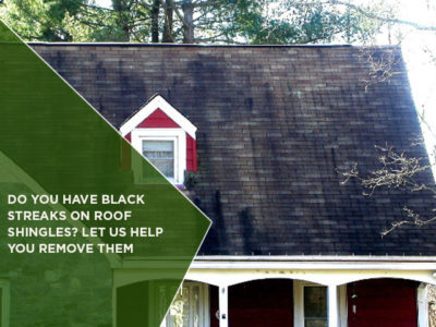 Do You Have Black Streaks On Roof Shingles? Let Us Help You Remove Them