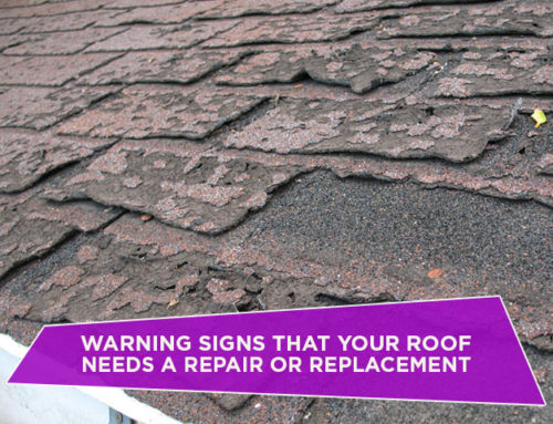 Warning Signs That Your Roof Needs A Repair Or Replacement